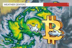 اظهارات خوشبینانه فرانکی مک دونالد (Frankie MacDonald) هواشناس کانادایی در خصوص روند صعودی بیت کوین (Bitcoin)
