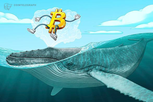 فعالیت گروهی از نهنگ های بیت کوین (Bitcoin) در سطح حیاتی 10570 دلار