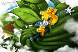 تله صعودی آخر هفته؟ قیمت بیت کوین (Bitcoin) مجددا به 18000 دلار رسید