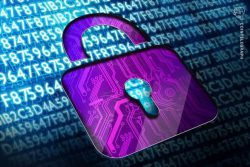 پروتکل تغییرناپذیر حریم خصوصی اتریوم (Ethereum) سیستم حاکمیتی را ارائه می دهد