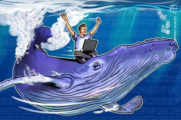 باوجود ثبات بیت کوین (Bitcoin) بالاتر از سطح 50000 دلار نهنگ ها همچنان به انباشت ادامه می دهند