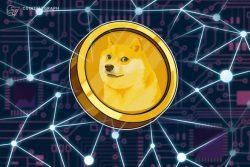 دوج کوین (Dogecoin ) از ابتدا کوین محبوبی نبوده است؛ روزهای ابتدایی ارز دیجیتال مورد علاقه ایلان ماسک